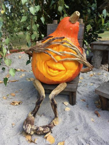 Pumpkin2018 - 11